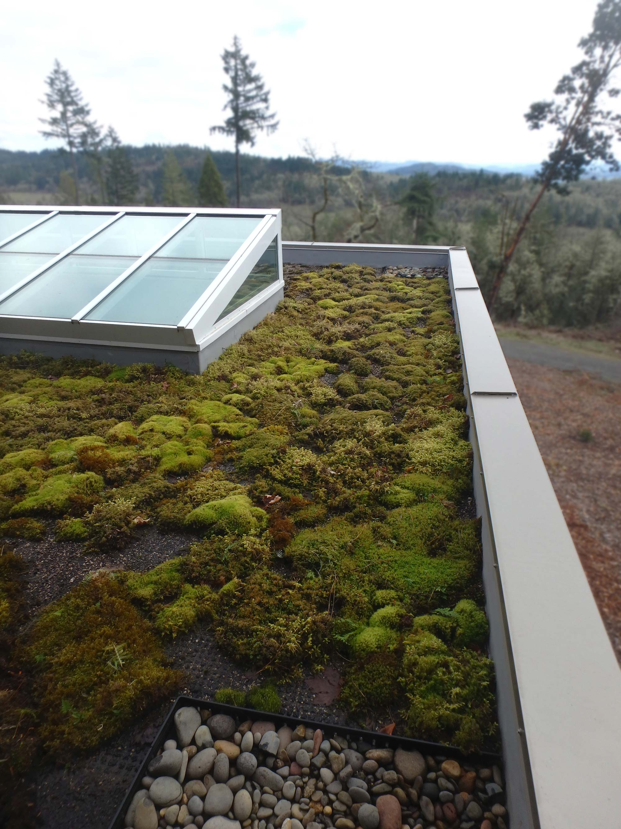 TIMBERIDGE_PoolHouseGreenRoof